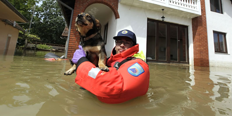 Flooding in Bosnia and Serbia